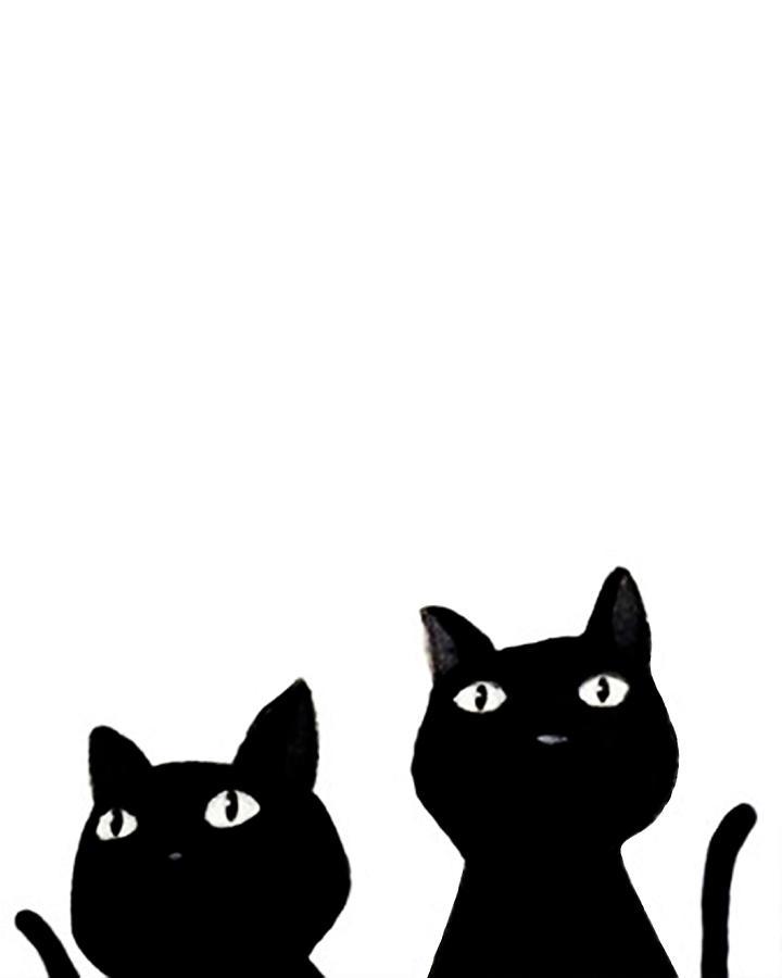 Black Cats Members