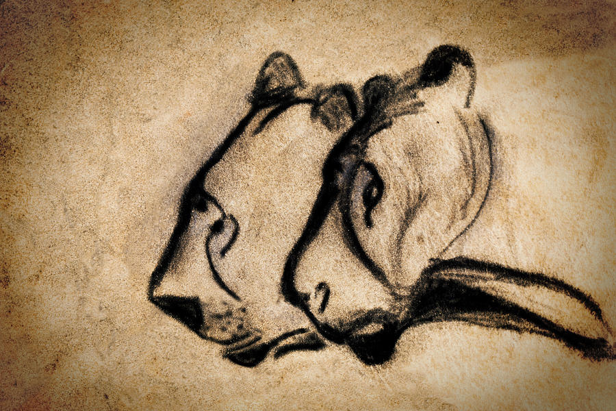 two chauvet cave lions by Weston Westmoreland