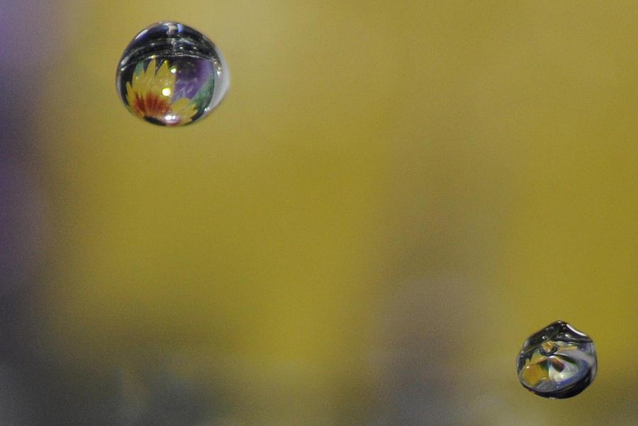 Two Droplets Photograph by Nirmal Kumar