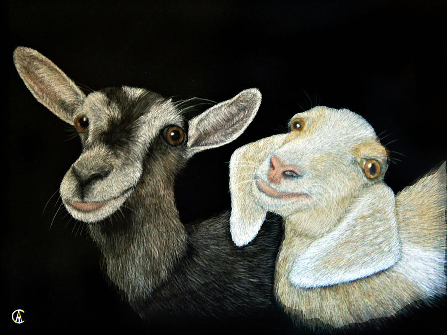 Two Goats by Angie Cockle