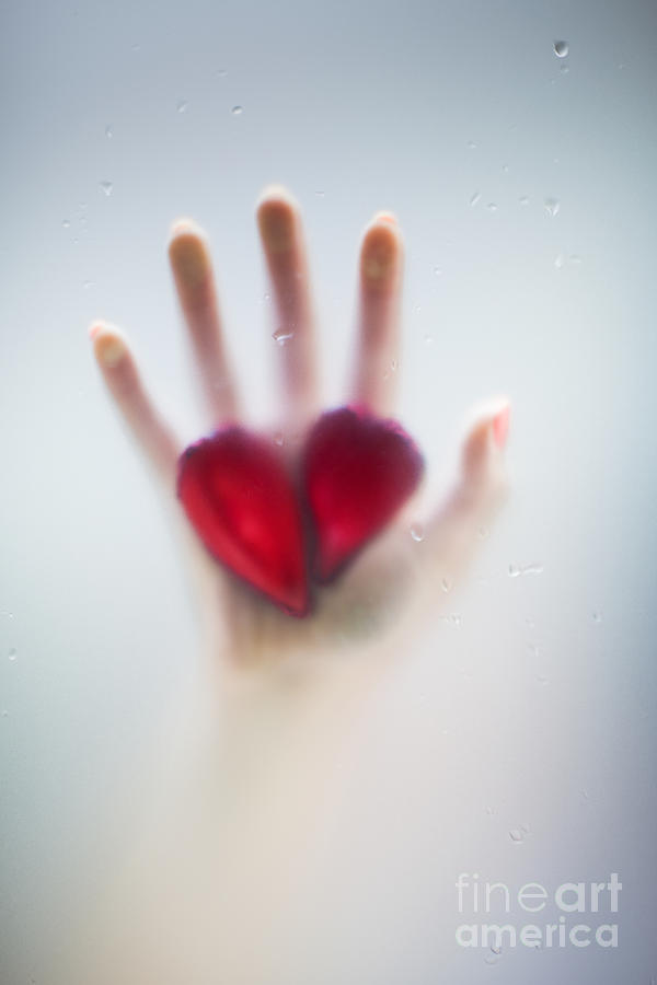 Beautiful Photograph - Two Hearts by Svetlana Sewell