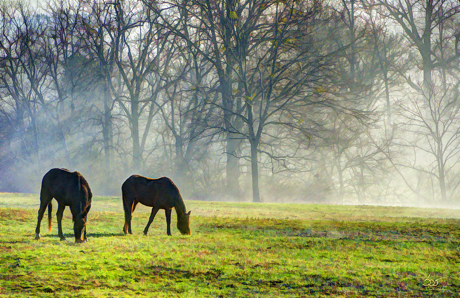 Two Horse Morning by Sam Davis Johnson
