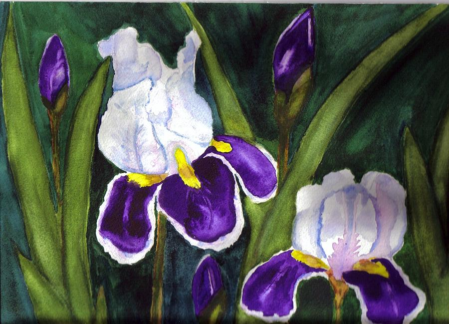 Iris Painting - Two In Bloom by Angela Campo