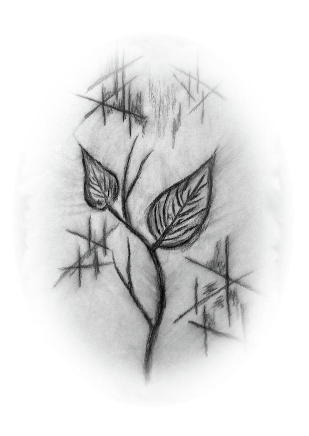 Two Leaves Drawing