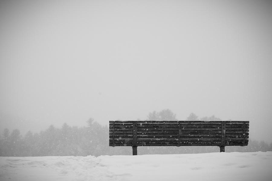 Two Lovers Sat On A Park Bench Photograph By Nathan Larson