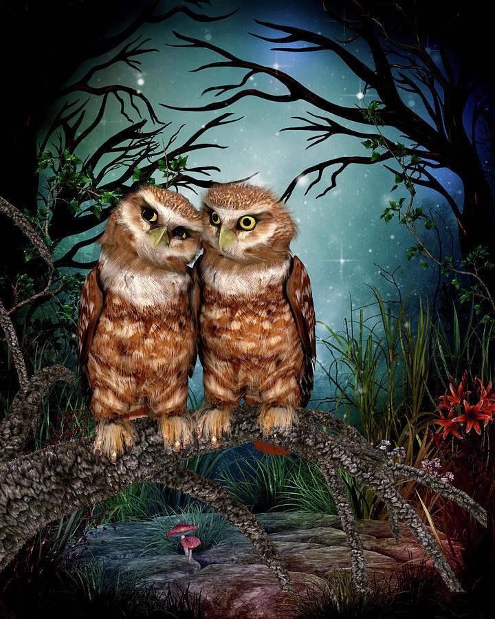 Animals Digital Art - Two owls in the night by John Junek