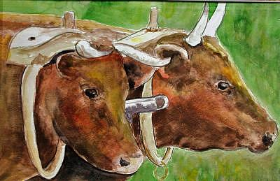 Two Oxen Print by Veda Hale