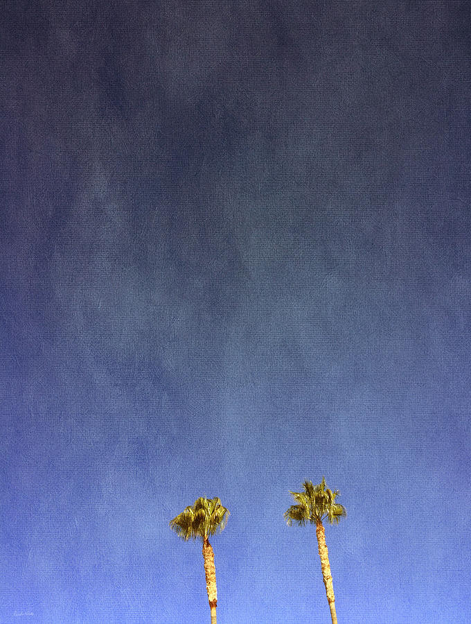 Palm Trees Photograph - Two Palm Trees- Art by Linda Woods by Linda Woods