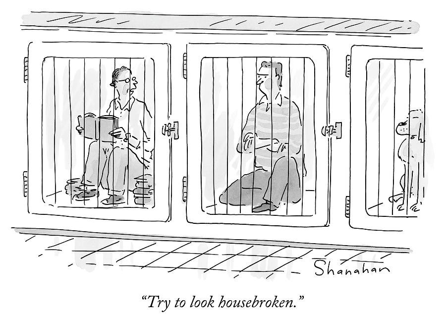 Two Prisoners Sit In Separate Dog Kennel Cells Drawing by Danny Shanahan