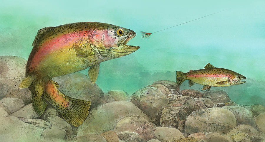 Two Rainbow Trout by John Dyess