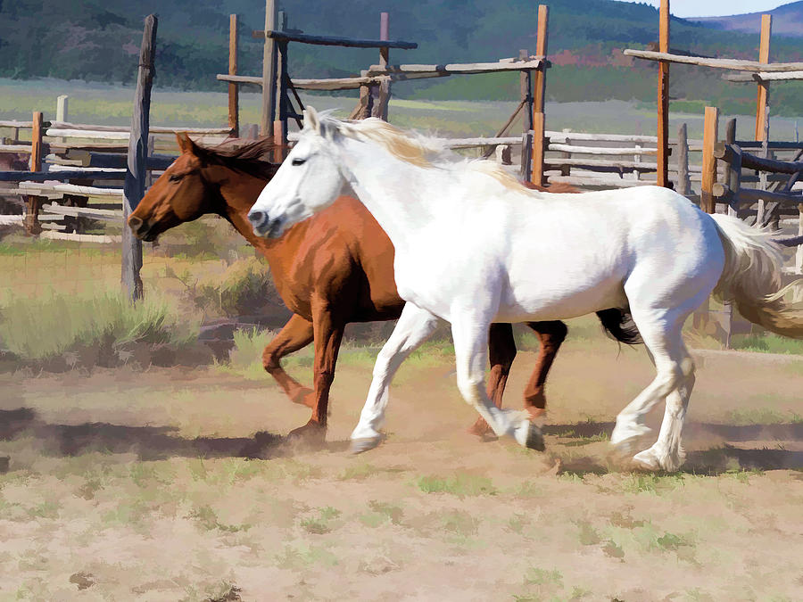 Two Ranch Horses Galloping into the Corrals by Nadja Rider