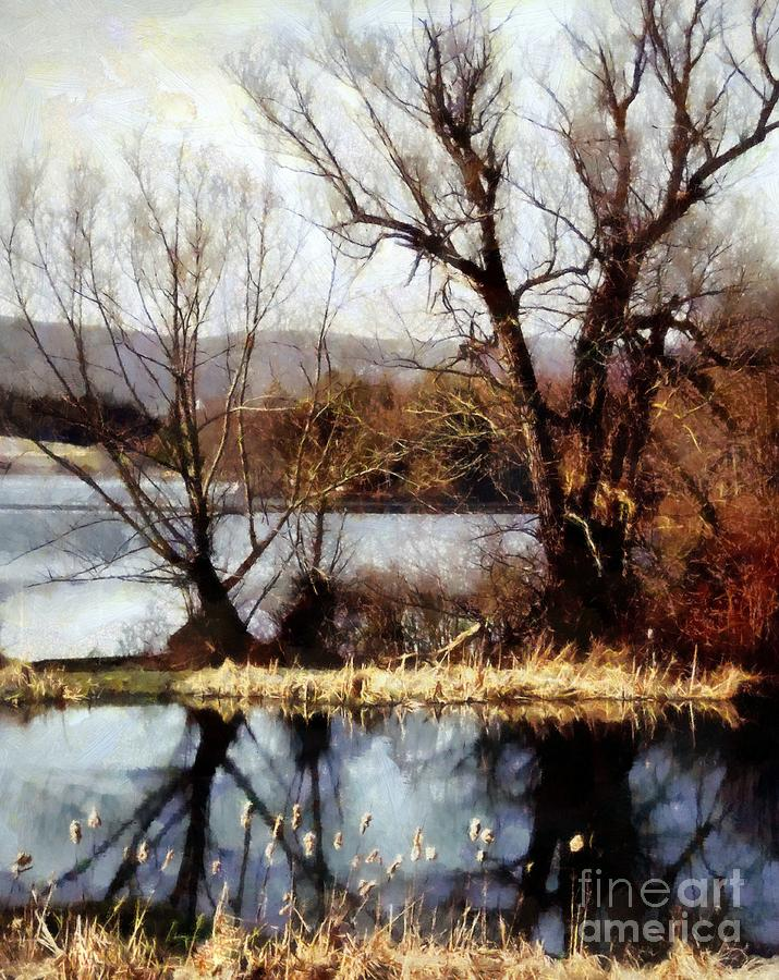 Bare Trees Photograph - Two Souls Reflect by Janine Riley