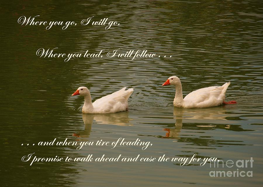 Swans Photograph - Two Swans - Marriage Vows by Yali Shi