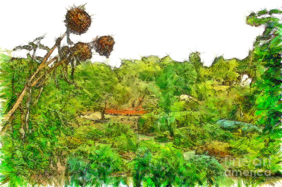 Pencil Digital Art - Two Thistles In The Garden Of The Simple by Giuseppe Cocco