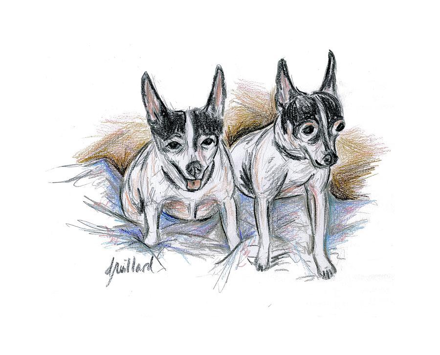Dogs Drawing - Two Toy Fox Terriers by Deborah Willard