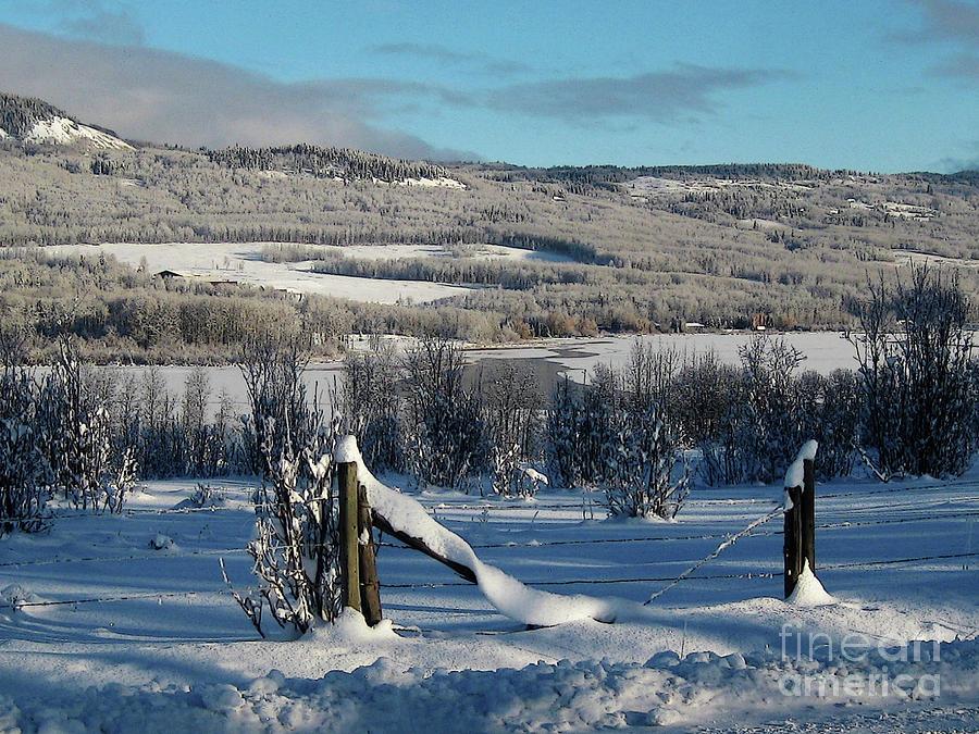 Tyee Lake from Hi-Road, Winter by Anne Havard