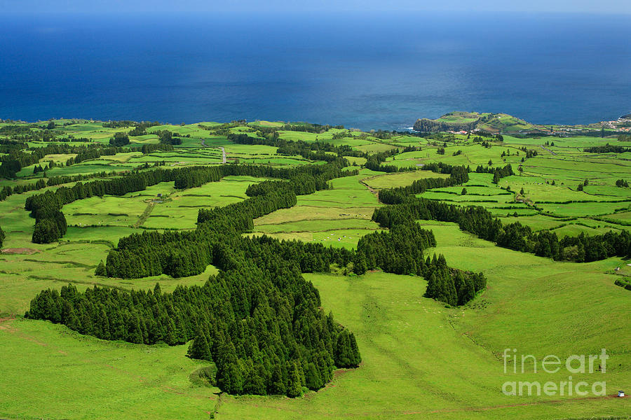 Landscape Photograph - Typical Azores Islands Landscape by Gaspar Avila
