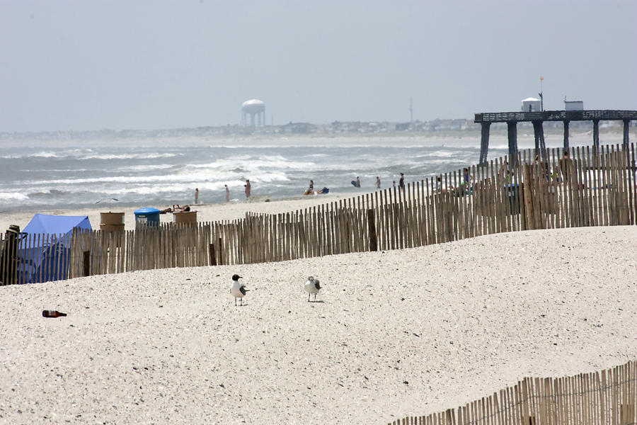 Landscape Photograph - Typical Jersey Shore Afternoon by Mary Haber
