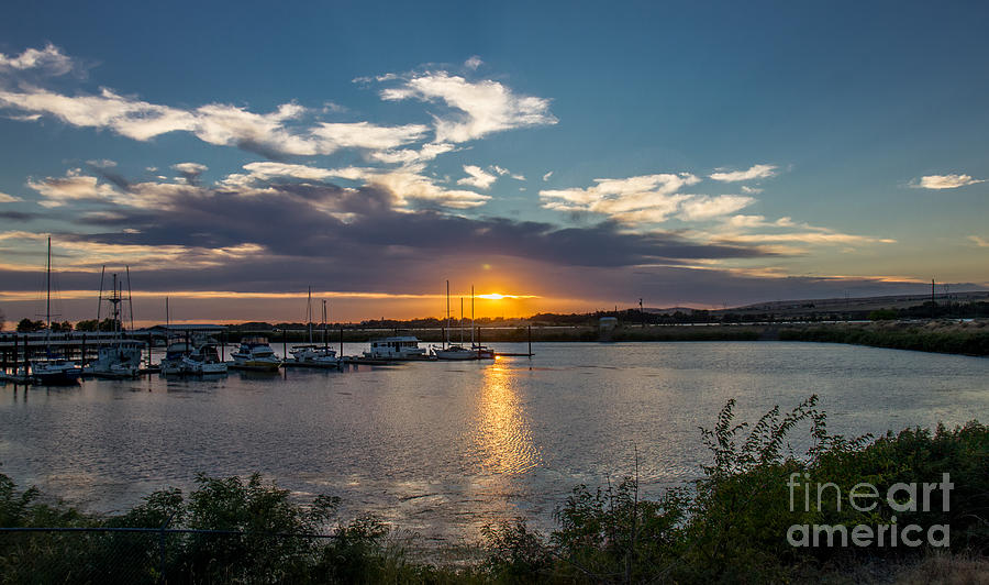 Umatilla Marina At Sunset