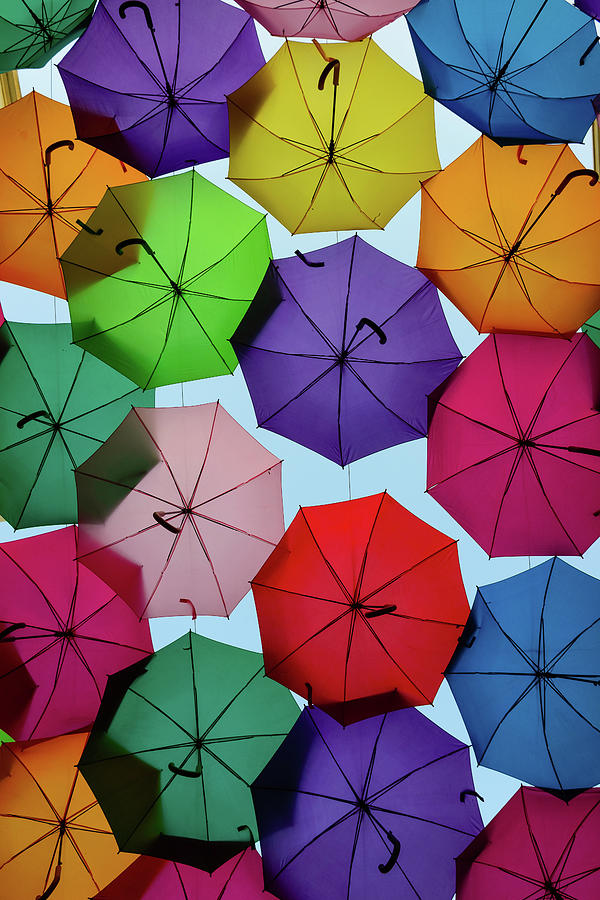 Umbrella Sky II Photograph