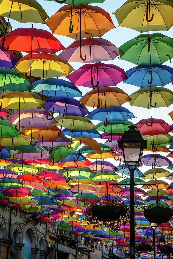 Umbrella Sky Photograph
