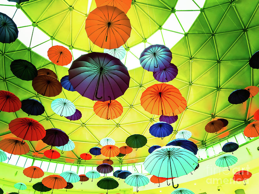 Umbrellas 1 by Camille Pascoe