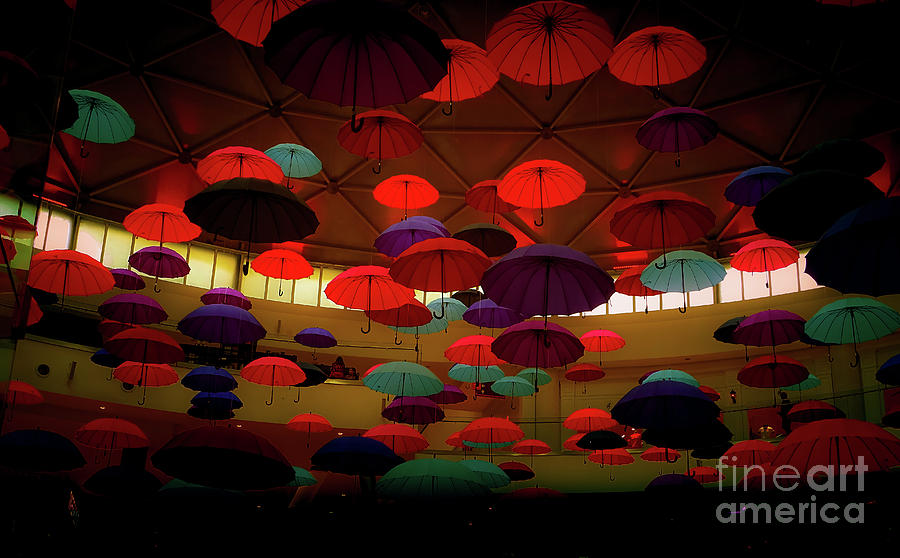 Umbrellas 3 by Camille Pascoe