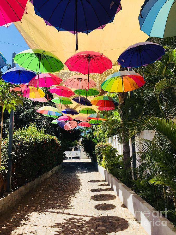 Umbrellas by Bill Thomson