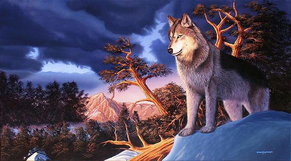 Wolf Painting - Un Rincon En La Montana by Sergio Gaspar