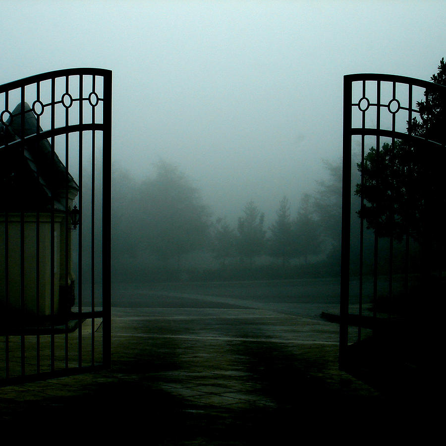 Gate Photograph - Uncaged by Mimi Yoon