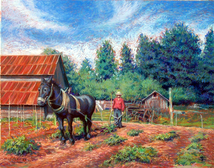 Landscape Pastel - Uncle Frank And Bully by Suzanne Berry