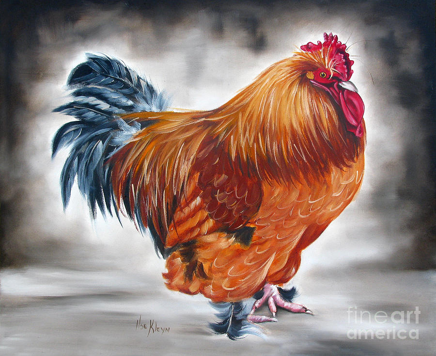 Rooster Painting - Uncle Samies Rooster by Ilse Kleyn