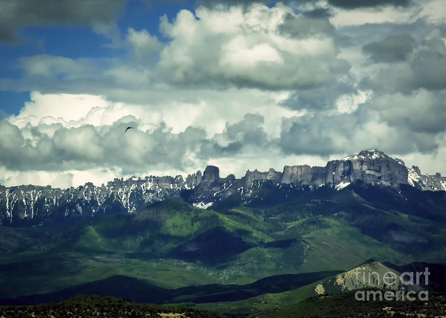 Colorado Photograph - Uncompahgre Colorado Alpine by Janice Pariza