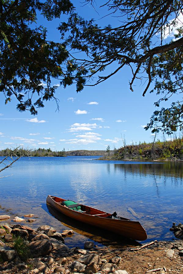 Boundary Waters Canoe Area Wilderness Photograph - Under The Cedars by Larry Ricker