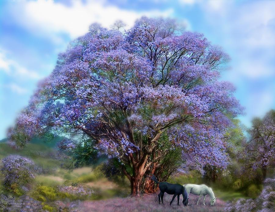 Jacaranda Tree Mixed Media - Under The Jacaranda by Carol Cavalaris