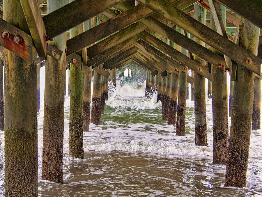 Under the Pier by Sandra Anderson