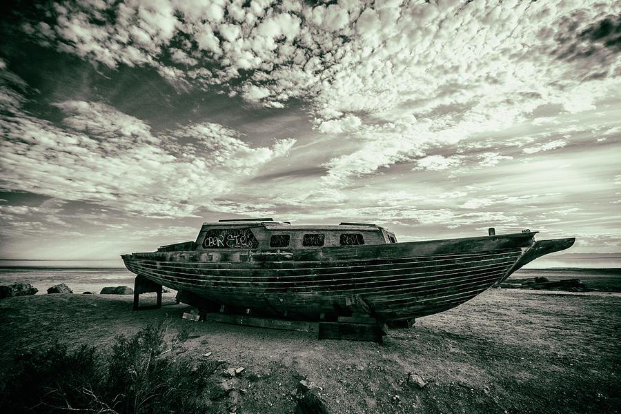 Under the Salton Sky by Mike Trueblood