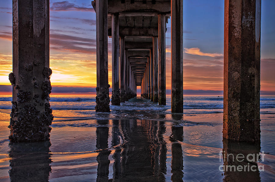 Under The Scripps Pier Photograph By Sam Antonio Photography