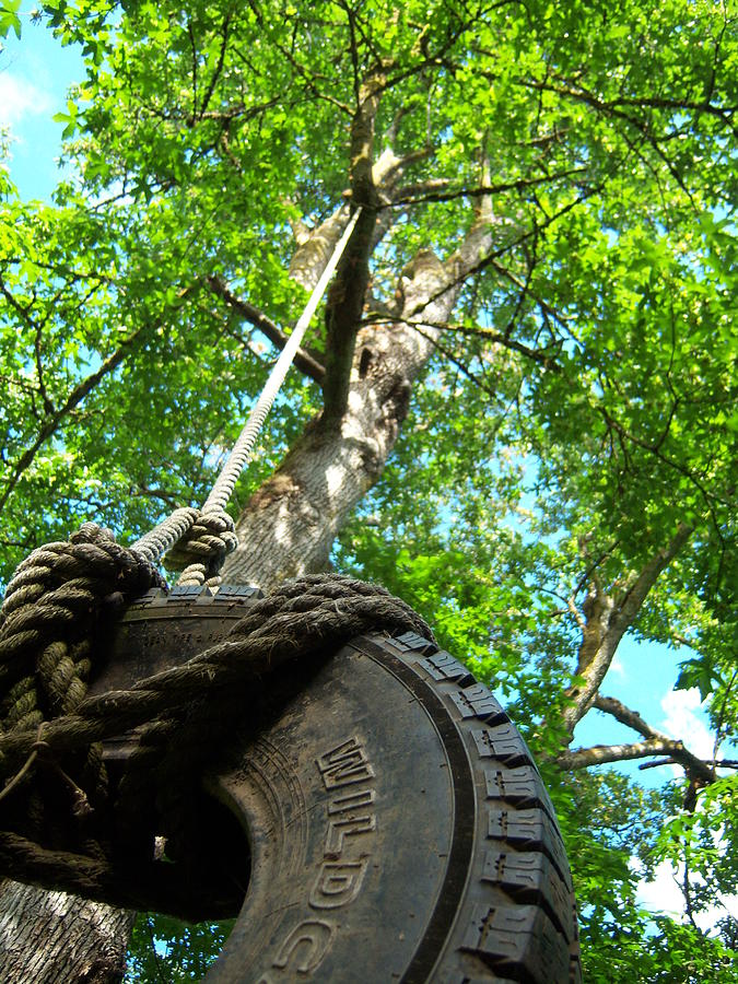 Swing Photograph - Under The Tire Swing by Ken Day
