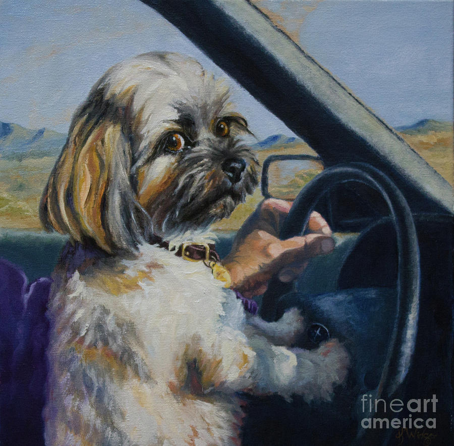 Lhasa Apso Painting - Underage Driver by Katy Widger