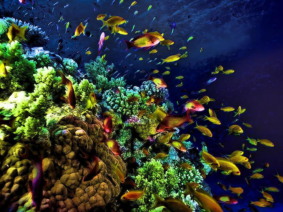 Underwater Tropical Fish Glow in the Dark Fantasy Painting ...