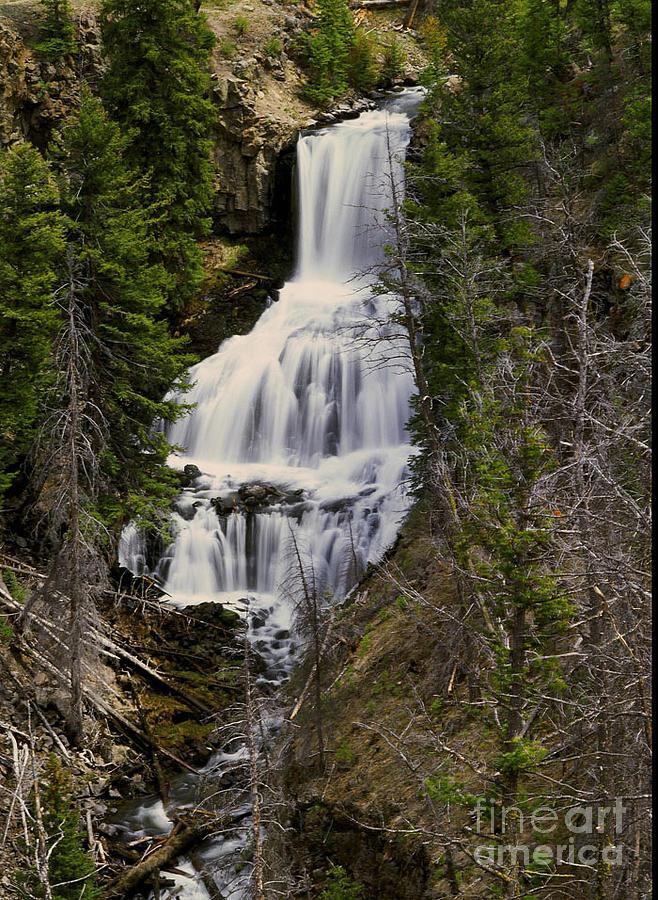 Waterfall Photograph - Undine Falls On Lava Creek by Dennis Hammer