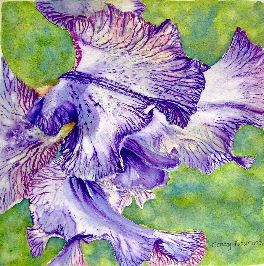 Unfolding-iris Painting by Nancy Newman