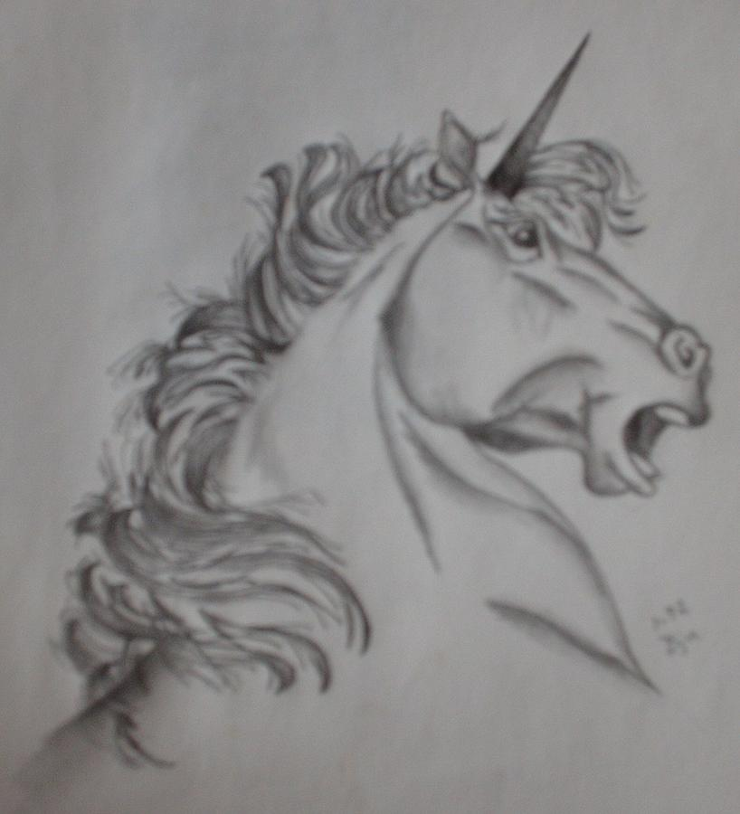 Pencil Drawing Drawing - Unicorn by Brenda Coster