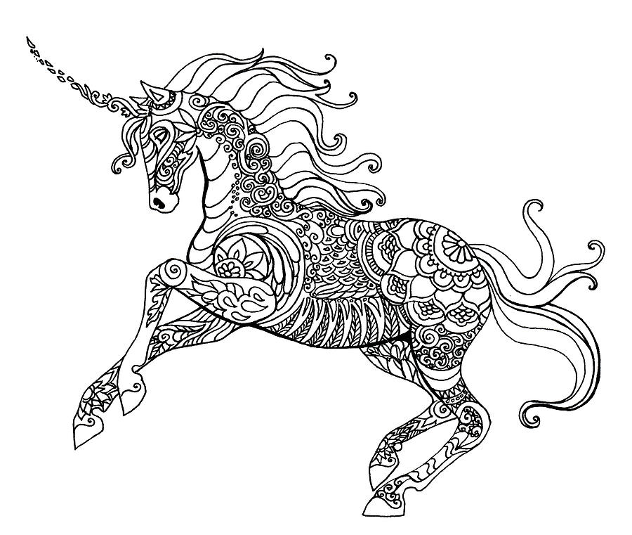 Unicorn Doodle Drawing By Katherine Nutt