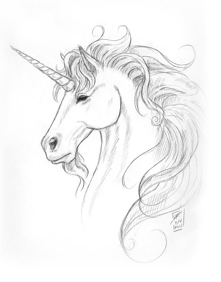 Unicorn Portrait Drawing By Brandy Woods