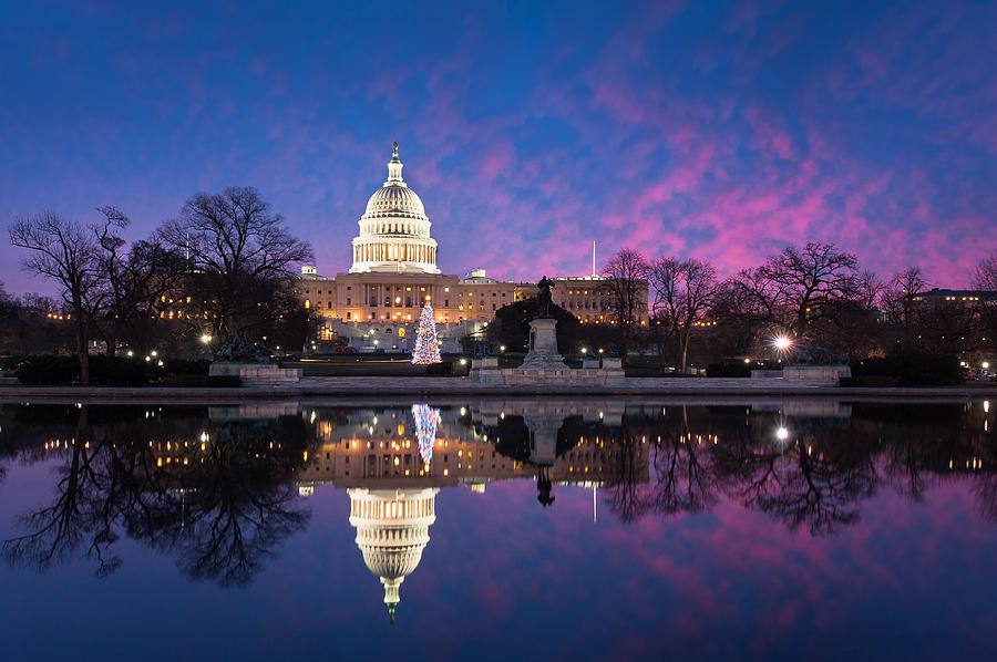 Architecture Photograph - United States Capitol Building Christmas Tree Reflections by Mark VanDyke