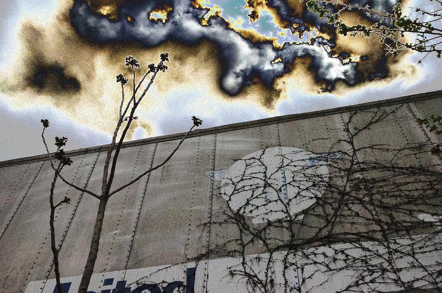 United by William Loeb