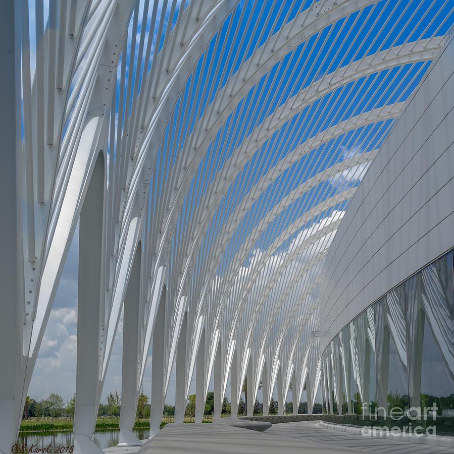 University Arching Lines by Sue Karski