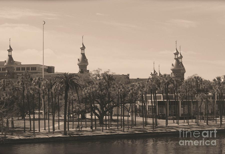 Tampa Photograph - University Of Tampa With Old World Framing by Carol Groenen